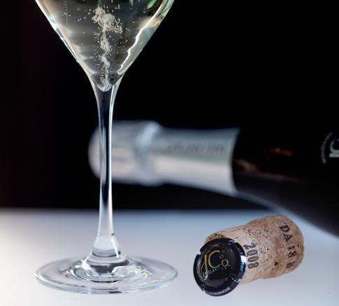 champagne-jaillant-categorie-cuvee-city335-accordeon