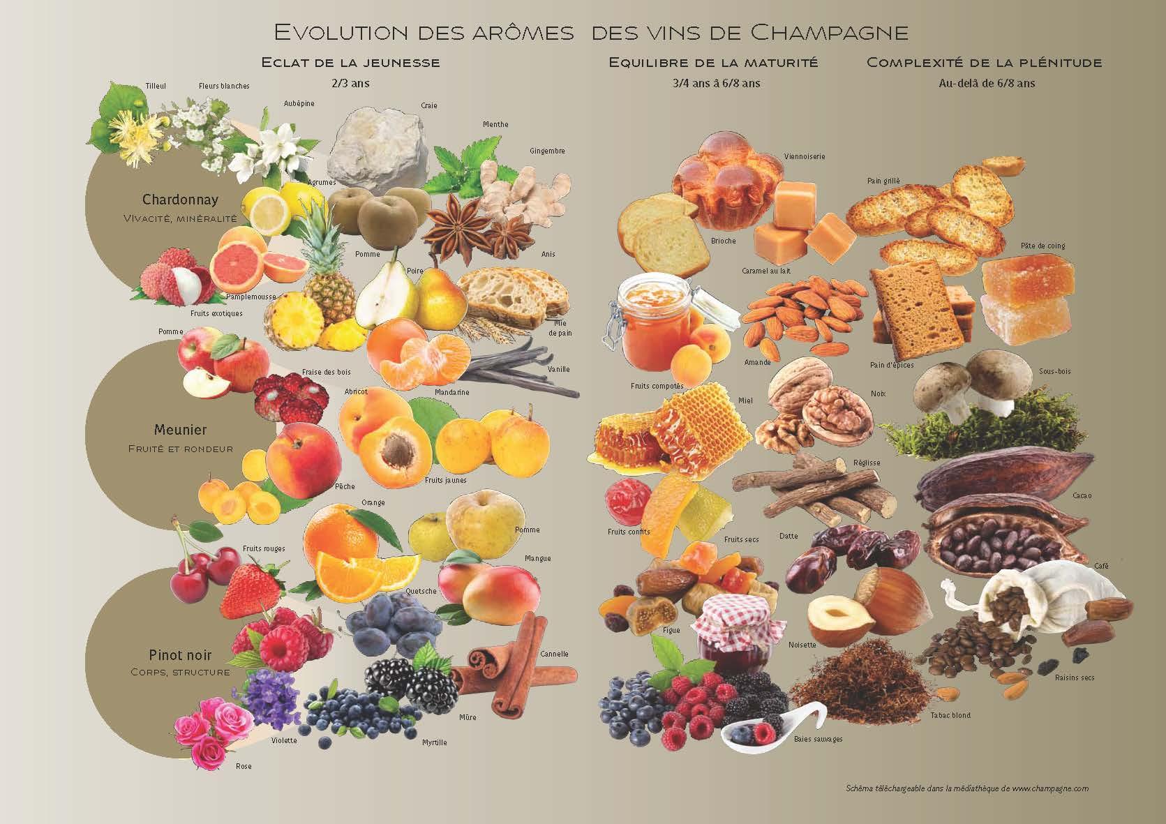 champagne-jaillant-actualites-carte-des-aromes